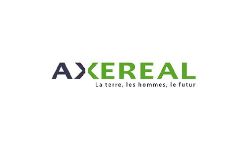 Image logo Axereal